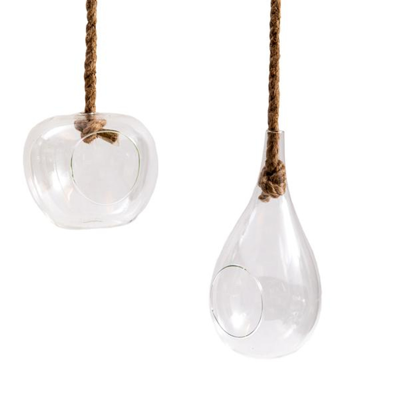 dom and teardrop shaped hanging terrarium