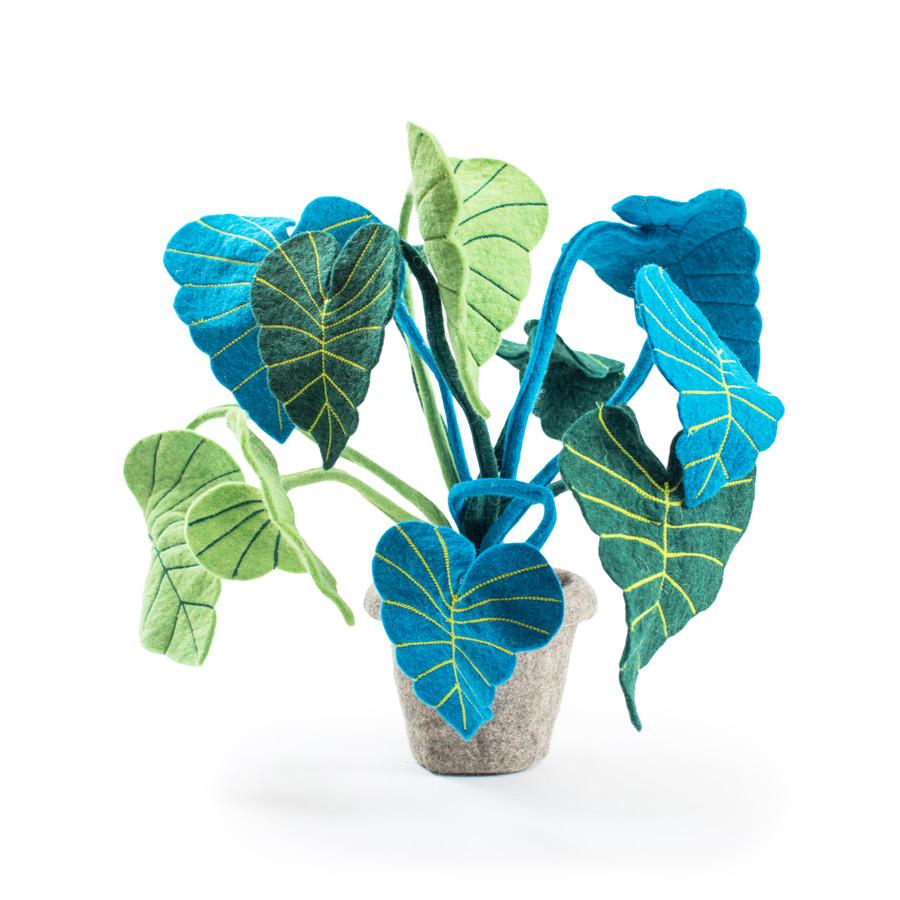 blue and green felt toro plant