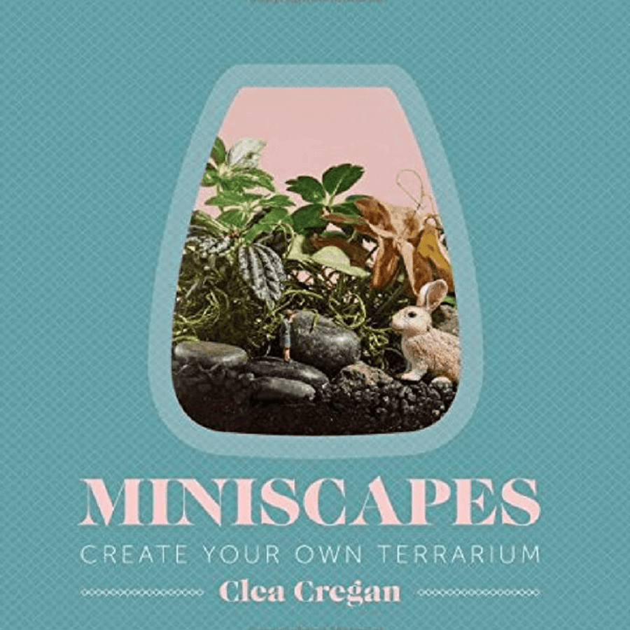 Miniscapes: create your own terrarium