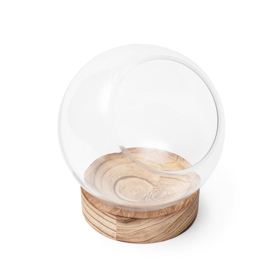 Glass Terrarium with Wood Base