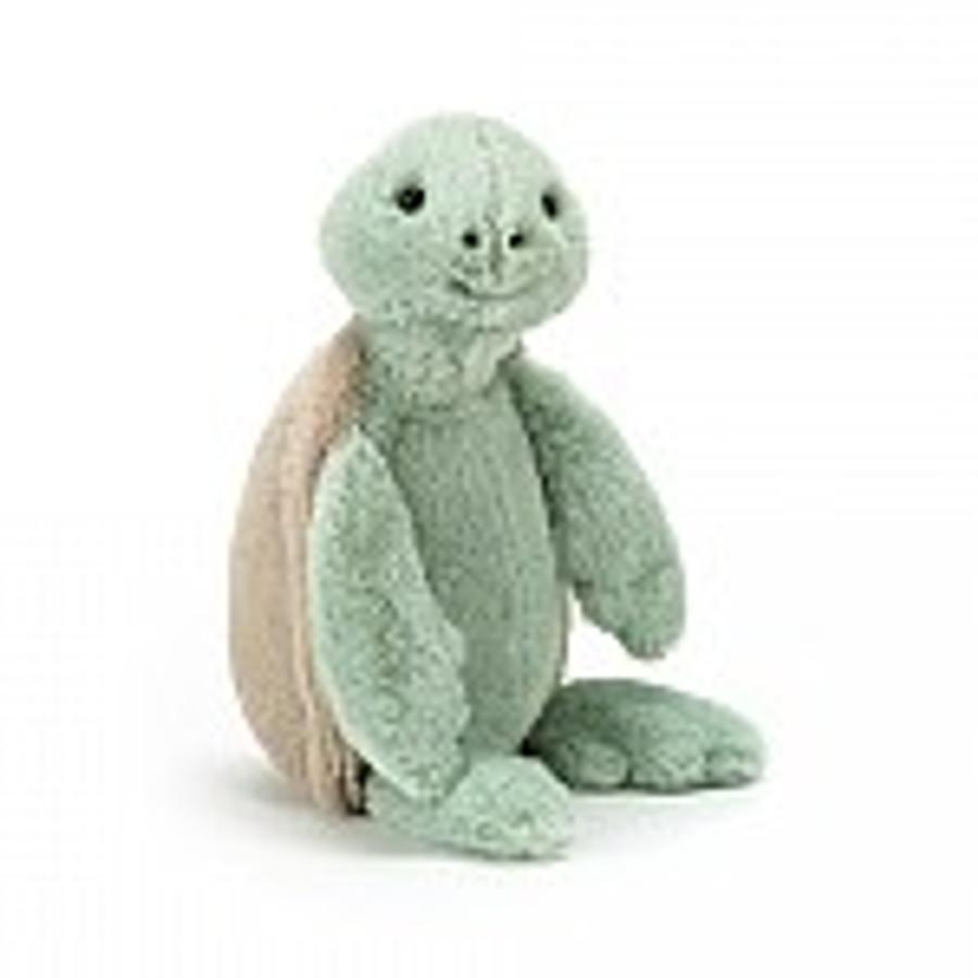 Bashful Turtle