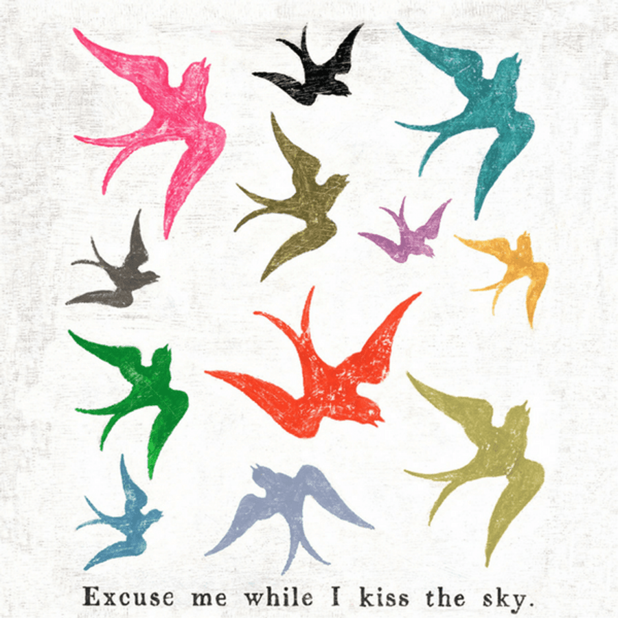 """Colorful bird art print with the phrase """"Excuse me while I kiss the sky"""" printed on the bottom."""