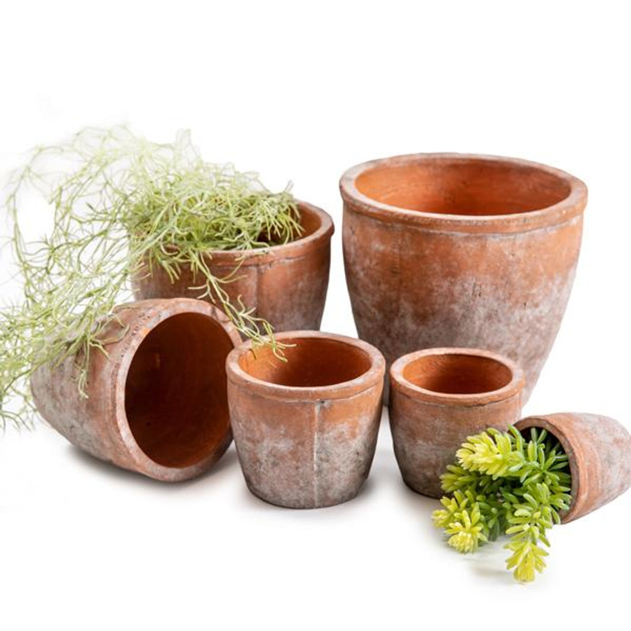 TerraCotta Cement Pots