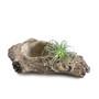 Cement Driftwood Pot