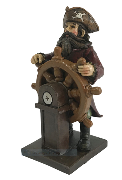 Pirate Captain at Helm