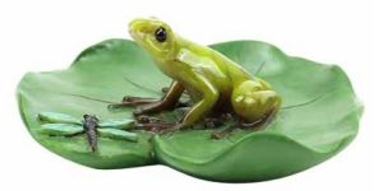 Frog and Dragonfly on Lilypad