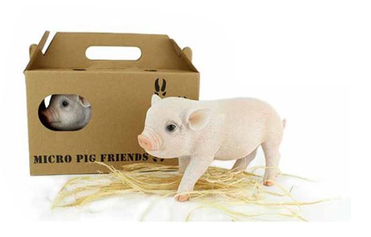Pig in Travel Pack