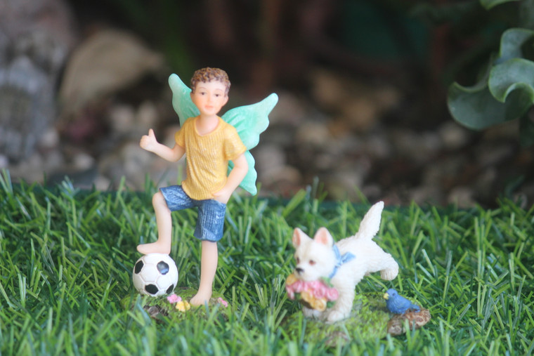 Fairy Rory and his ball