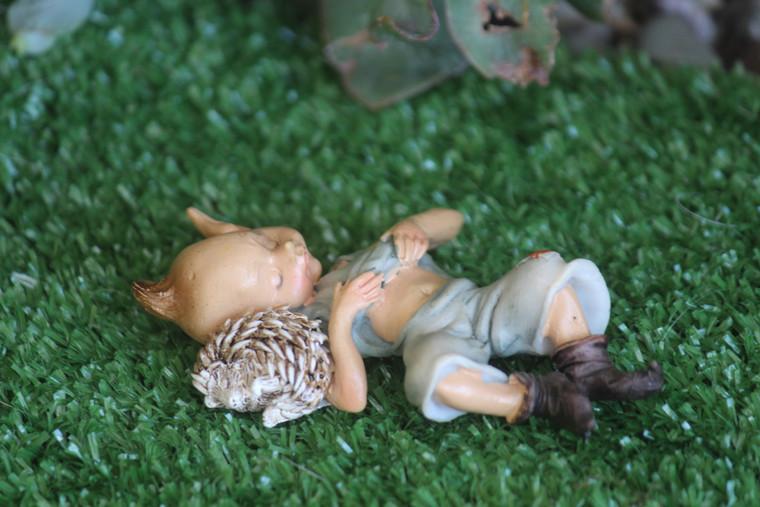 Sleeping Elvin and Hedgehog