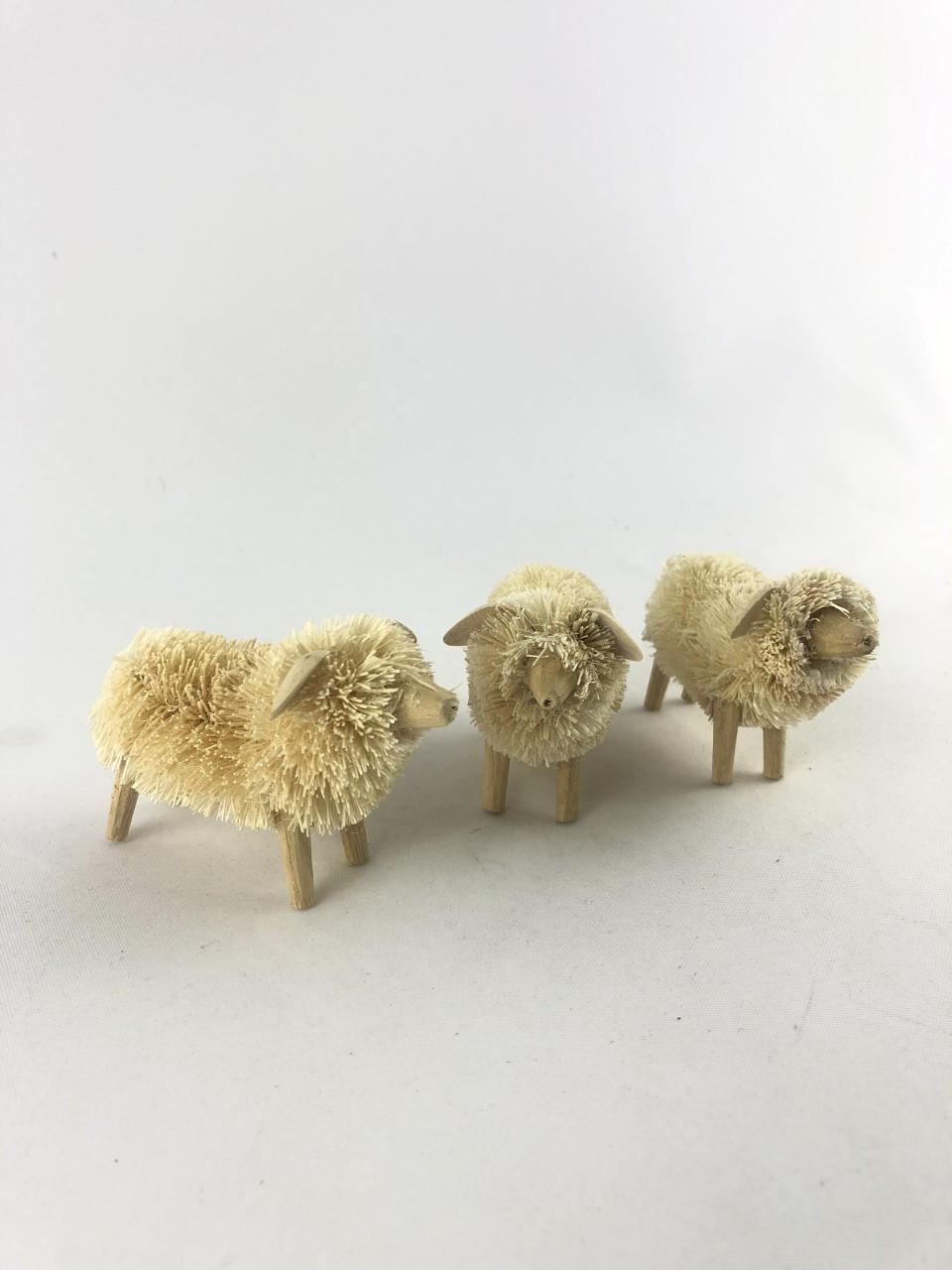 Sheep - Set of 3