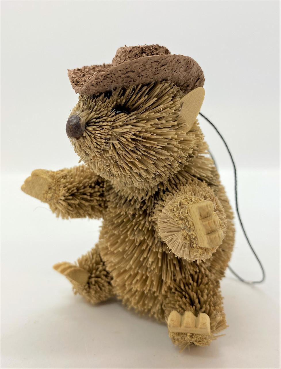 Gorgeous Bristlebrush Wombat wearing an Aussie Akubra Hat!!