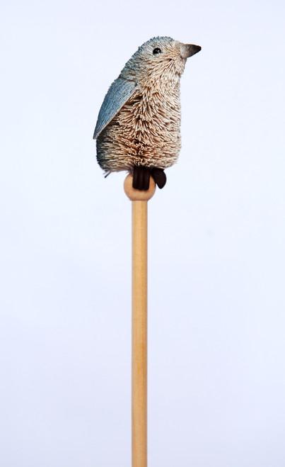 Fairy Penguin - Pencil