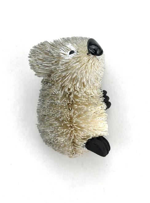 Koala - Magnet
