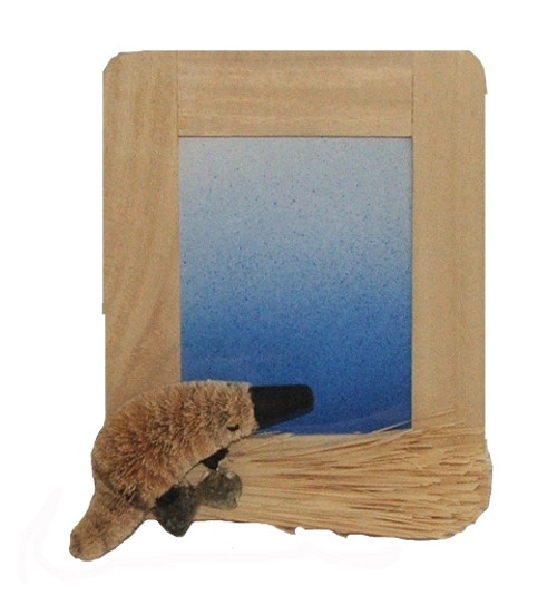 PLATYPUS - Picture Frame