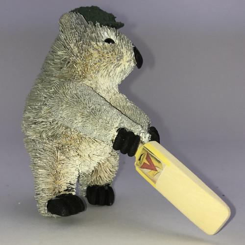 Koala Cricketer