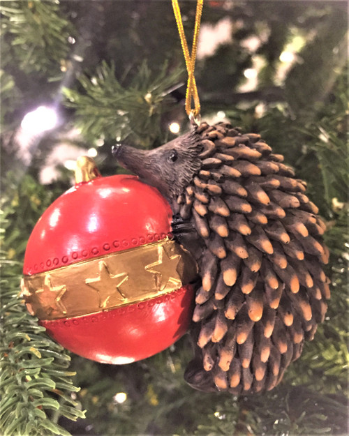 C-Echidna Christmas Tree Ornament - Climbing on Bauble 8-10cm