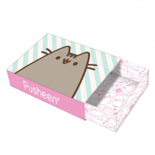 Pusheen Mini Writing Set