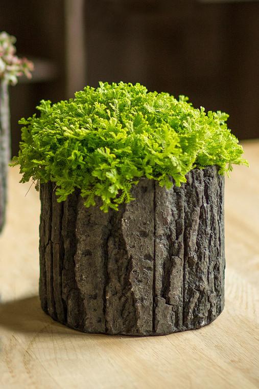 X-Large Round Concrete Pot with Bark Motif