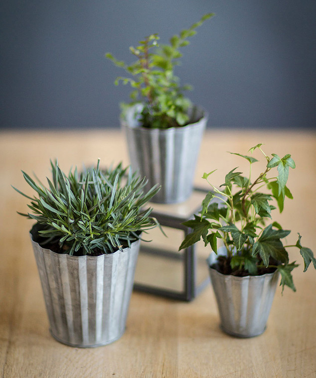 Set of Three Tin Pots