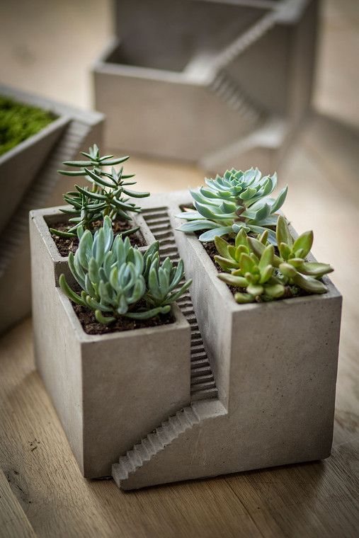 Cement Architectural Cube Planter III