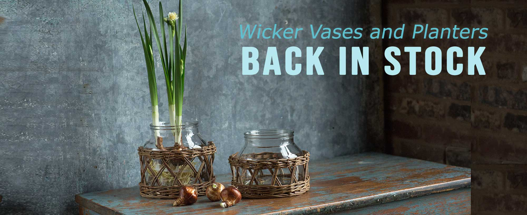 Wicker Vases and Baskets