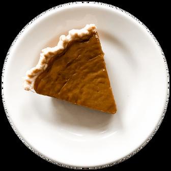 Pumpkin- SNO