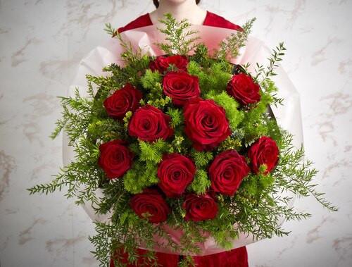 12 Explorer Roses.