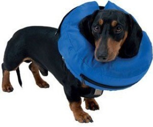 An ingenious inflatable collar that still enables all-round vision, and is less cumbersome than heavy plastic collars.  It's also made from a strong nylon weave that is bite and scratch resistant. If the collar gets mucky you can simply deflate it and bung it on a 30 degree wash.