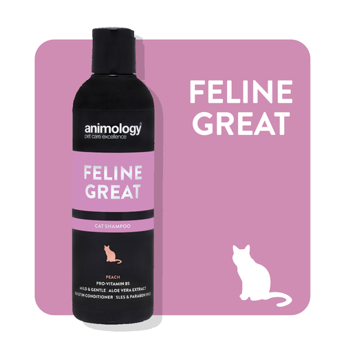 eline Great is a mild and gentle cat shampoo that helps to leave your cat's coat clean, conditioned and healthy while also smelling great.  It also contains aloe vera extract to soothe and protect the skin and pro-vitamin B5 to nourish the coat.