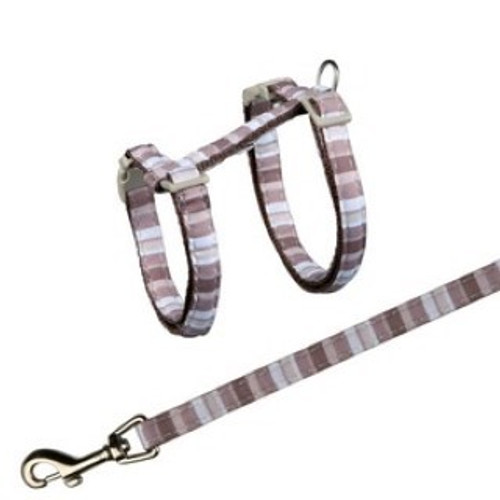 Cat harnesses can allow an owner to go outside with their cat and feel comfortable about letting them explore the outdoors. Cat harnesses are much more comfortable than a collar and lead combination, and allows the owner to have more control over the pet in cases of risk or danger but will keep them happier and healthier.