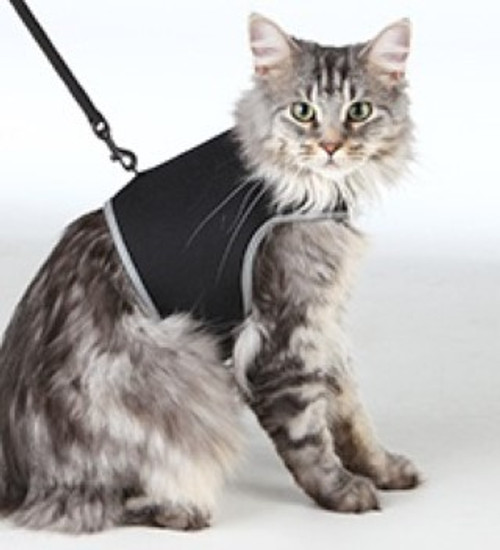 Some cats like to go for walks with their owners. The necessary cat harness with leash is also available in various sizes and colours.  The soft harness with elastic leash is very comfortable to wear thanks to the soft padding.  Made from quality materials with a reflective edging for night time walking. Lead also stretches to allow your pet to have more freedom.  Great for introducing house cats to the outside.  Made of breathable mesh material Soft harness with fully elasticated leash Comfortable to wear due to soft padding Extra snap buckle also ensures a safe hold With reflective piping Fully adjustable at chest and belly