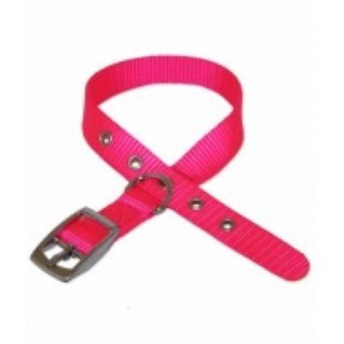 Nylon collar with clip fastening. It is easily adjusted and comes in a  range of colours.