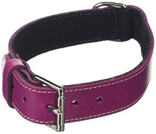 BBD Plain leather dog collar- Boysenberry