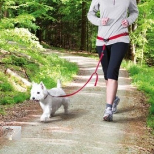 Jog with your dog/ Then this is the dog lead for you. Another great dog item sold here at Elliotspetwarehouse/