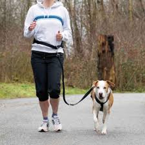 Waist Belt with Leash for Small and Medium-Sized Dogs made of hard-wearing tape leash for small and medium-sized dogs ideal for jogging, nordic walking etc.