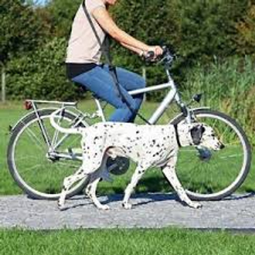A great lead for anyone who wants to exercise their dog whilst cycling. Also ideal for joggers, Part of the many hard to find dog and cat items sold here at Elliotspetwarehouse