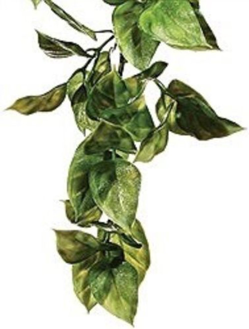 Can be used in conjunction with live plants. Easy clean plant for any reptile set up. Anothe r great item from our spoecial purchase zone here at Elliotspetwarehouse