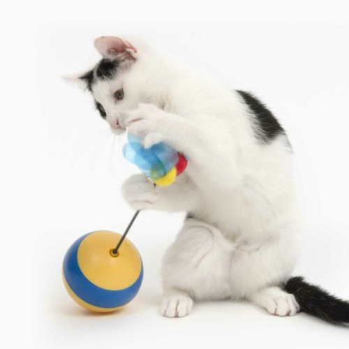 Interactive cat toy Laser toy Treat Dispenser Hours of fun for cats and kittens