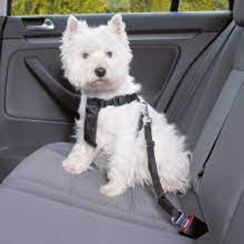 Quality car harness for dogs. Robust and comfortable and fully adjustable. Various sizes for different dog breeds.