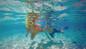 snorkeling cozumel shore excursion