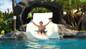 Aqua Kauai resort slide day pass