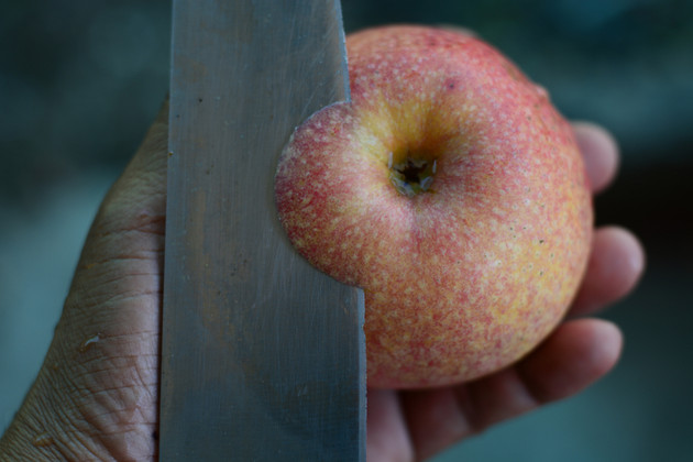 The Art of Skinning an Apple with a Tactical Knife