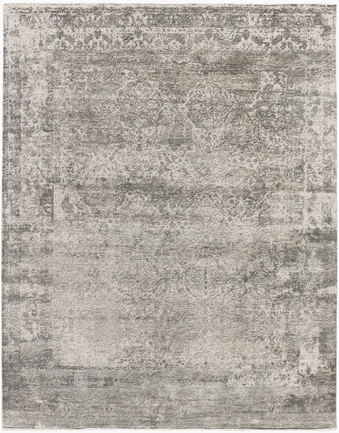 Amer Rugs Zenith ZEN-86 Gray Gray Hand-knotted Area Rugs