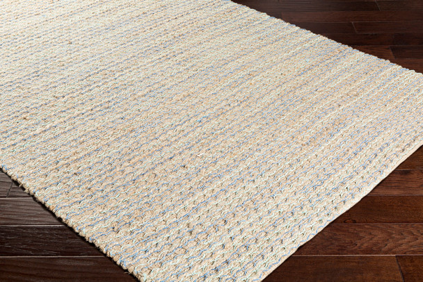 Surya Alexa AEX-1003 Global Hand Woven - 2' X 3' Rectangle Area Rug