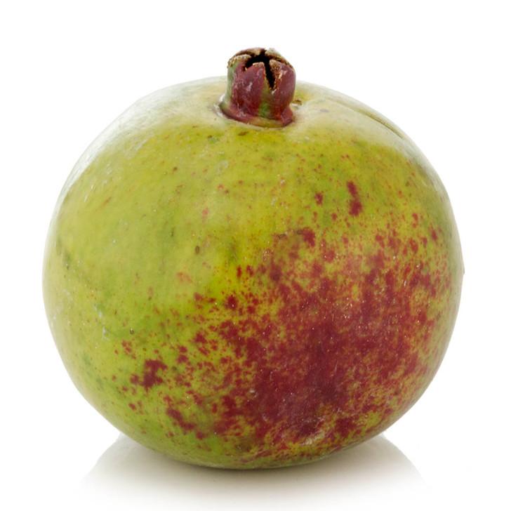 Himalayan Green Plum Pomegranate