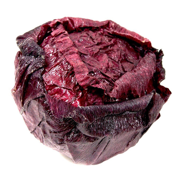 Fake Savoy Open Cabbage Head Purple