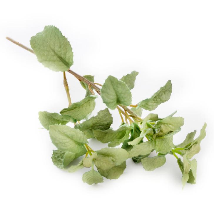 Mint Herb Stem