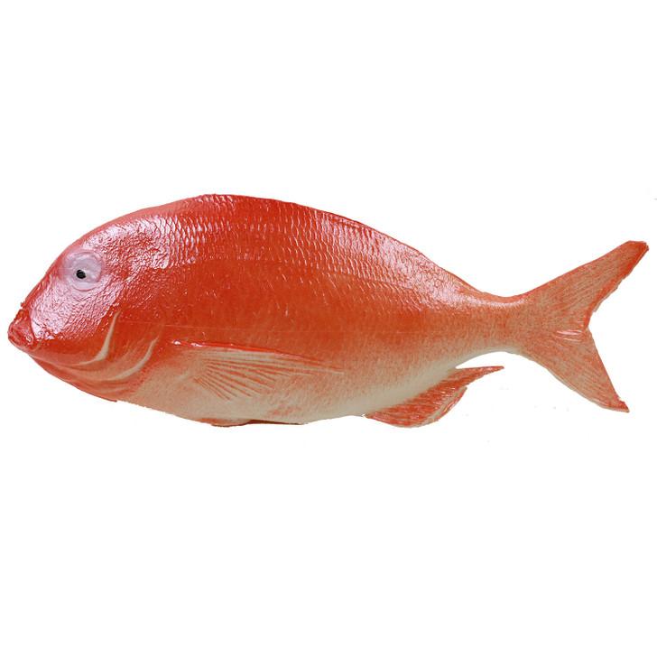 Prop Fake Fish Snapper