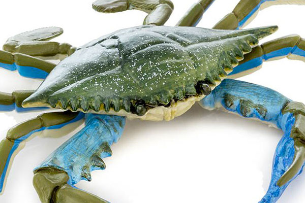Fake Seafood