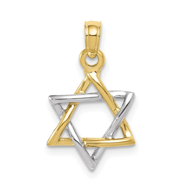 10k Yellow and White Gold Polished Star of David Pendant